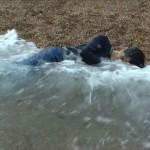 Blanket (tides), 2004, video still